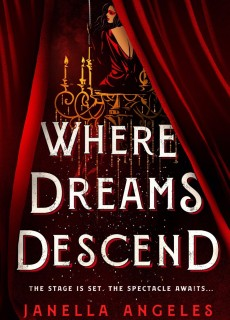 Where Dreams Descend Book Release Date? 2020 Fantasy Book Releases