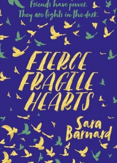 Fierce Fragile Hearts Book Release Date? 2019 Available Now Releases