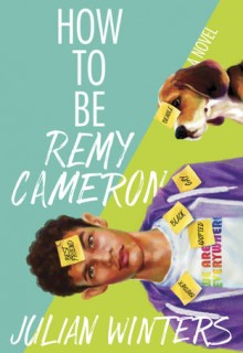 How To Be Remy Cameron Book Release Date? LGBT Novel Releases
