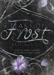 When Does Tears Of Frost Novel Come Out? Fall 2019 Book Release Dates