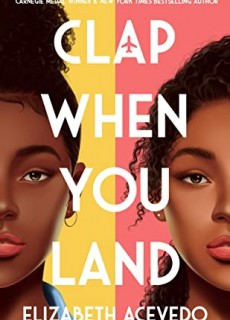 When Does Clap When You Land Come Out? 2020 Book Release Date