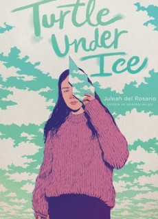 When Will Turtle Under Ice Novel Come Out? 2020 Book Release Dates