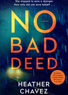 No Bad Deed: A Novel Release Date? 2020 Adult Fiction Publications