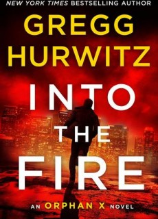Into The Fire Book Release Date? 2020 Mystery Publications