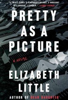 Pretty As A Picture Publication Date? 2020 Thriller Book Release Dates
