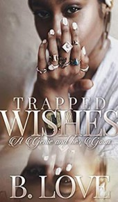 Trapped Wishes: A Genie And Her Goon Novel Release Date? Early 2020 Publications