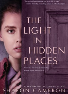 The Light In Hidden Places Novel Release Date? 2020 Historical Fiction Releases