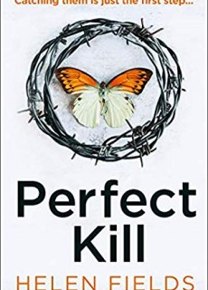 When Does Perfect Kill Novel Release? 2020 Thriller Book Release Dates