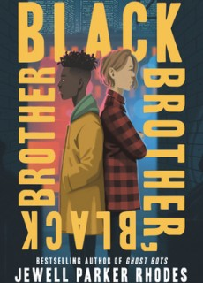 Black Brother, Black Brother Release Date? 2020 YA Cultural & Realistic Fiction Releases