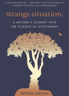 Strange Situation: A Mother's Journey Into The Science Of Attachment Release Date? 2020 Biographies & Memoir Releases