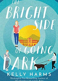The Bright Side Of Going Dark Release Date? 2020 Contemporary Fiction Releases