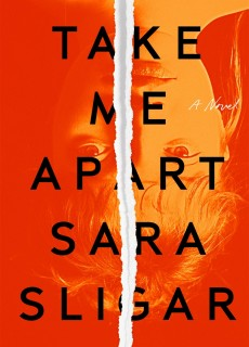 When Will Take Me Apart Novel Come Out? 2020 Thriller Releases