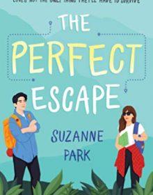 The Perfect Escape Book Release Date? 2020 YA Contemporary Romance Releases