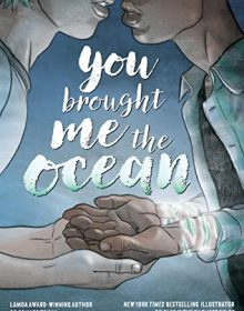 When Will You Brought Me The Ocean By Alex Sanchez Come Out? 2020 YA Sequential Art Releases