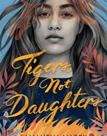 When Does Tigers, Not Daughters - Novel By Samantha Mabry Come Out? 2020 YA Magical Realism