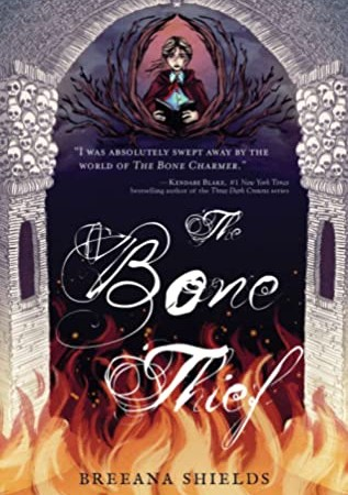 When Does The Bone Thief By Breeana Shields Come Out? 2020 YA Fantasy Releases
