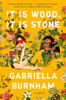 It Is Wood, It Is Stone By Gabriella Burnham Release Date? 2020 Contemporary & Cultural Fiction Releases