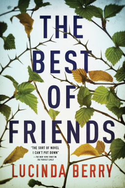 The Best Of Friends By Lucinda Berry Release Date? 2020 Mystery Thriller Releases