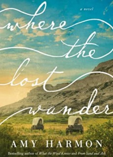 Where The Lost Wander By Amy Harmon Release Date? 2020 Historical Fiction Releases