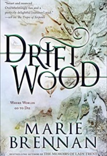 When Will Driftwood By Marie Brennan Release? 2020 Fantasy & Fiction Releases
