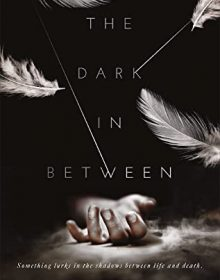 The Dark In-Between By Elizabeth Hrib Release Date? 2020 YA Paranormal Fantasy Releases