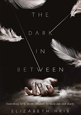 The Dark In-Between By Elizabeth Hrib Release Date? 2020 YA Paranormal Fantasy Releases
