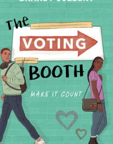 When Will The Voting Booth By Brandy Colbert Release? 2020 YA Contemporary Romance Releases