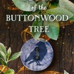 When Will South Of The Buttonwood Tree By Heather Webber Release? 2020 Magical Realism Releases