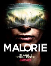 When Will Malorie (Bird Box #2) By Josh Malerman Release? 2020 Horror & Thriller Releases