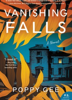 Vanishing Falls By Poppy Gee Release Date? 2020 Suspense & Mystery Thriller Releases