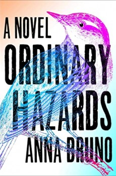 When Will Ordinary Hazards By Anna Bruno Release? 2020 Literary Fiction Releases