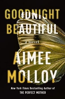 Goodnight Beautiful By Aimee Molloy Release Date? 2020 Mystery Thriller Releases
