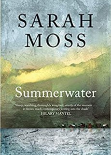 When Will Summerwater By Sarah Moss Release? 2020 Literary Fiction Releases