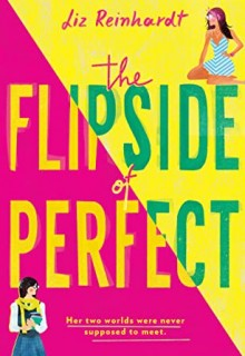 When Will The Flipside Of Perfect By Liz Reinhardt Release? 2021 YA Contemporary Romance