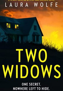 Two Widows By Laura Wolfe Release Date? 2020 Psychological Thriller Releases