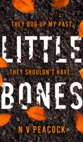 Little Bones By N.V. Peacock Release Date? 2020 Thriller Releases