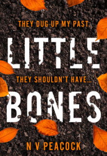 Little Bones By N.V. Peacock Release Date? 2020 Thriller Releases