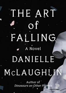 The Art Of Falling By Danielle McLaughlin Release Date? 2021 Fiction Releases