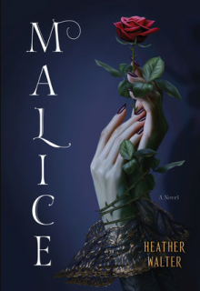 When Will Malice By Heather Walter Release? 2021 YA LGBT Fantasy & Romance