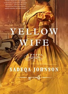 Yellow Wife By Sadeqa Johnson Release Date? 2021 Historical Fiction Releases